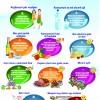 10 këshilla për të qenë në formë gjatë ditëve të nxehta të verës