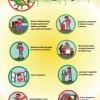 Si të mbrojmë veten dhe të tjerët nga gripi