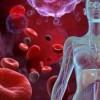 Sëmundjet e gjakut: Ja çfarë janë, nga se shkaktohen dhe si mund të mbahen nën kontroll!