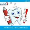 20 mars, Dita Botërore e Shëndetit të Gojës