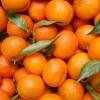 Studim: Dozat e larta të Vitaminës C parandalojnë përhapjen e kancerit në trup