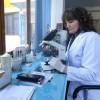 Brenda laboratorit të Kamzës, ku njerëzit kanë shumë probleme shëndetësore