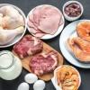 Produktet e pasura në vitaminën B12, vlerat dhe vetitë