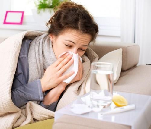 Gripi grua