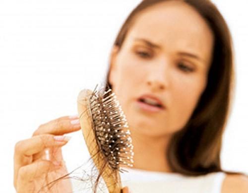 Rënia e flokëve te meshkujt dhe femrat, ja cilat bimë janë më të mirat për trajtimin e saj | GAZETA SHËNDETI